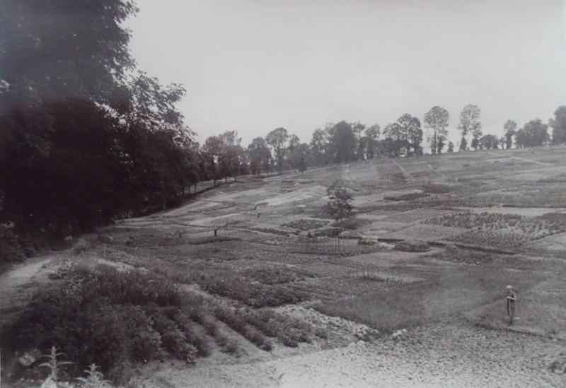 terrain-vierge-beaublanc-limoges-csp