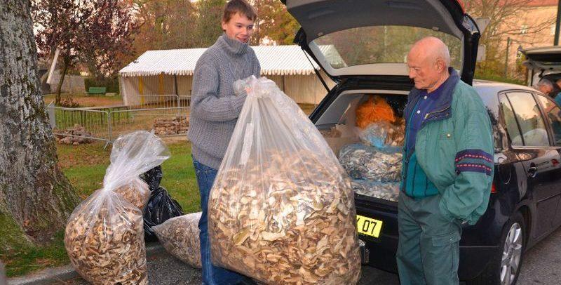record cepes sacs
