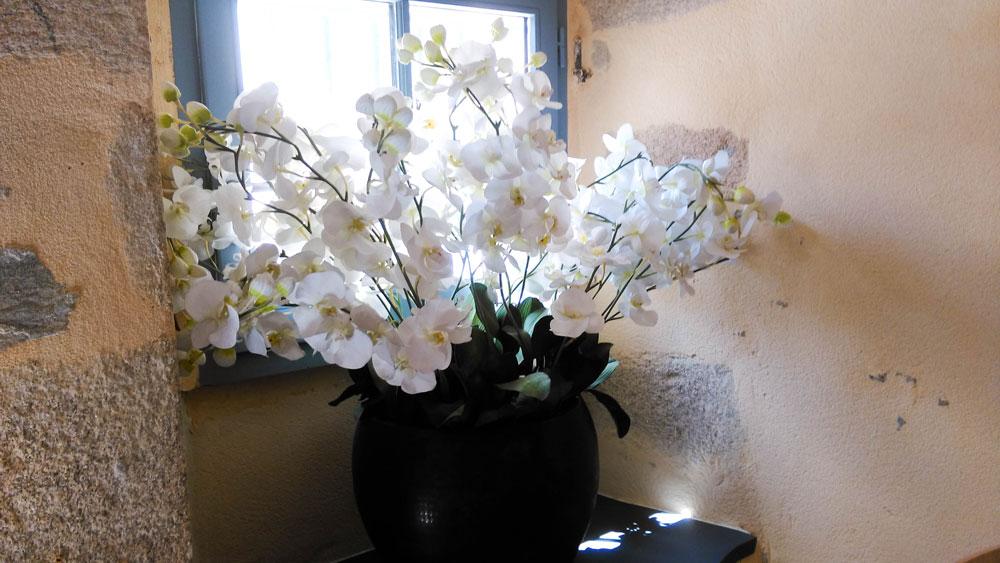 fleurs-deco-cuisine-cloitre-limoges