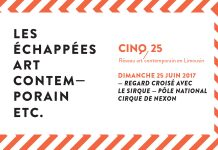 echappees-art-contemporain-cinq-25-juin-2017
