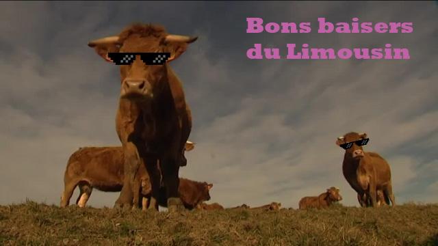 Bons Baisers du Limousin