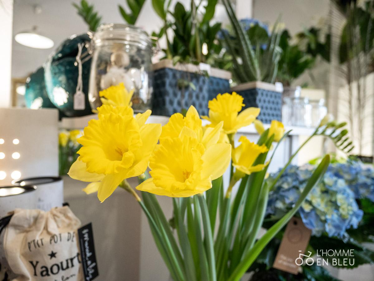 LB-Bergamote-fleurs-saison-saint-valentin-jonquille