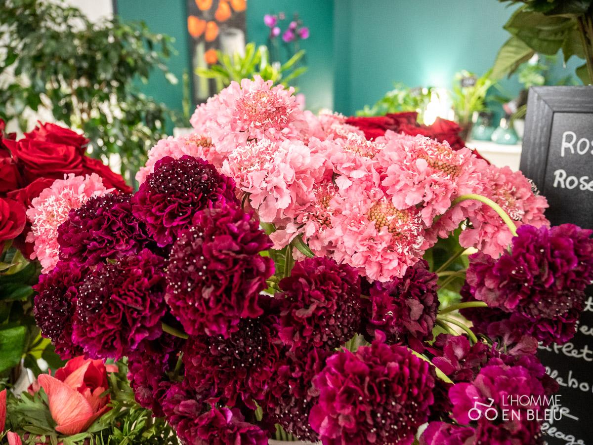 LB-Bergamote-fleurs-saison-saint-valentin-scabieuse