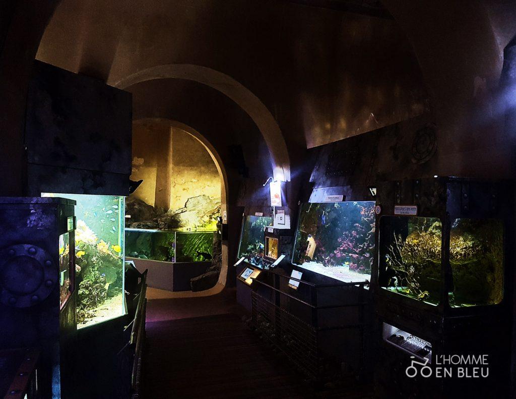 visite-aquarium-limoges-12