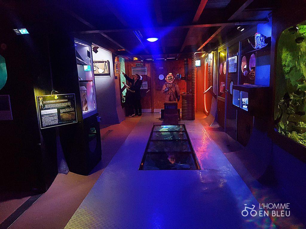 visite-aquarium-limoges-19