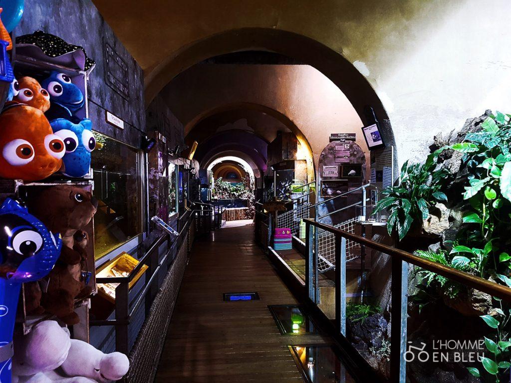 visite-aquarium-limoges-3