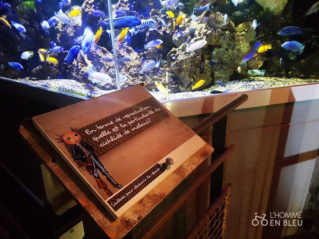 visite-aquarium-limoges-30