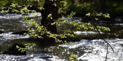 Riviere en Limousin