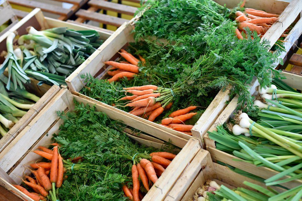carottes bio