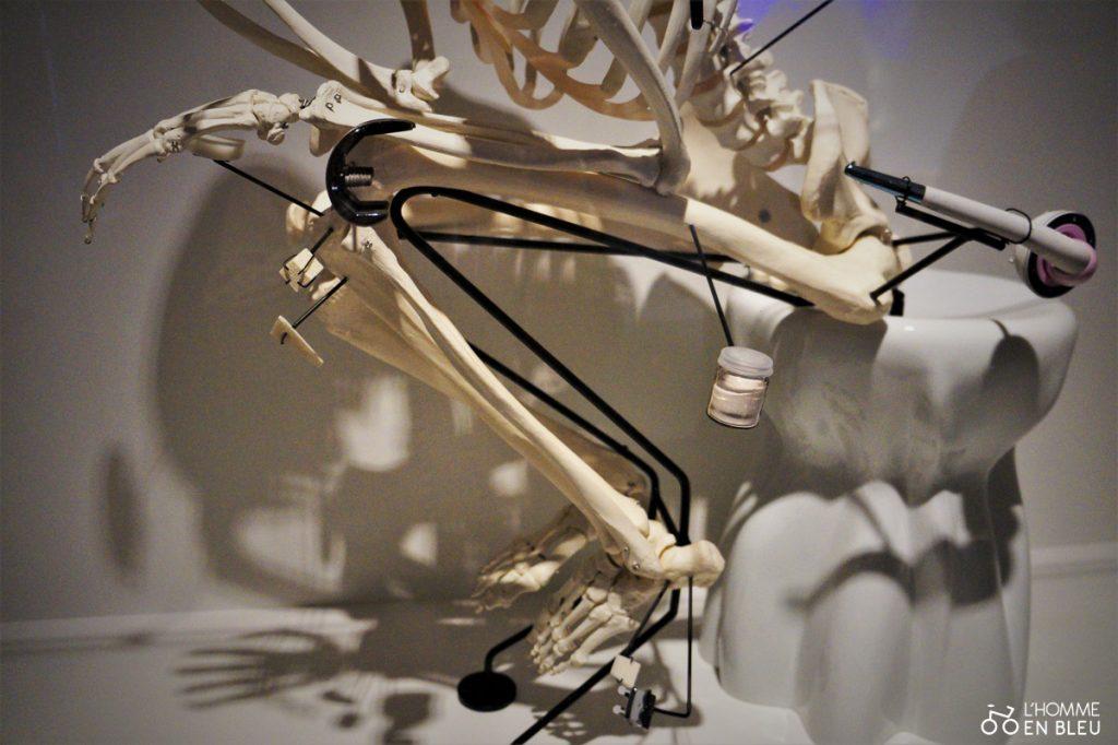 squelette-bas