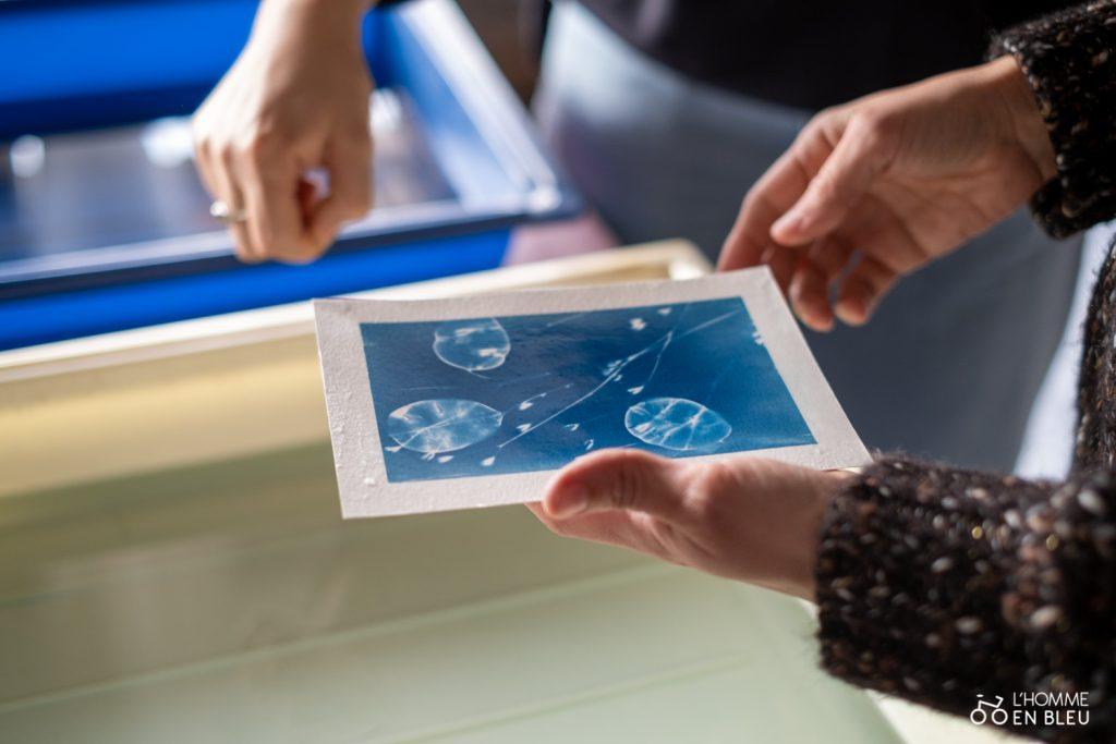 cyanotype les mains bleus bac 2