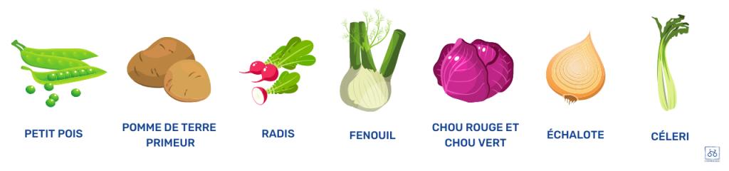 manger-légumes-printaniers-juin