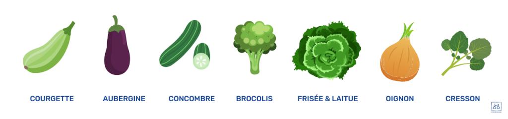 legumes-printaniers-mai-de-saison